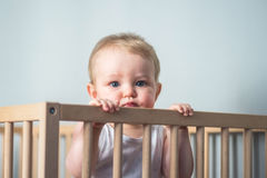 Baby boy in his crib. Cute blond baby boy with blue eyes staying in his crib- the baby has 9 months old and looks at the camera Royalty Free Stock Photos