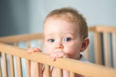 Baby boy in his crib. Cute blond baby boy with blue eyes staying in his crib- the baby has 9 months old and looks at the camera Stock Photos