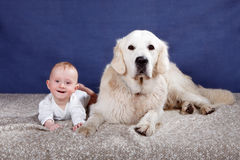 Baby boy and his dog Royalty Free Stock Image