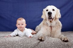 Baby boy and his dog Royalty Free Stock Photography