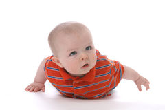 Baby boy on his tummy. Against a high key background Royalty Free Stock Image
