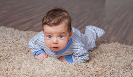 Baby boy at home. Portrait of a 2 months old baby boy at his home Royalty Free Stock Photos