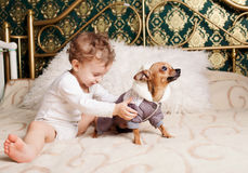 Baby boy at homeplaying with dog Stock Photo