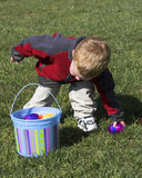 Baby boy hunting eggs Stock Images