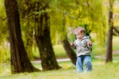 Baby Boy In Park Royalty Free Stock Image