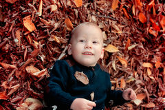 Free Baby Boy In The Woods Stock Images - 62875414