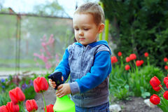 Baby boy irrigating flowers in colorful garden Stock Photos