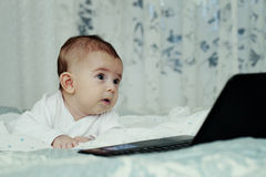 Baby boy with laptop Stock Photos