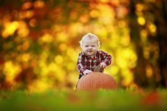 Baby boy with large pumpkin  Royalty Free Stock Photo