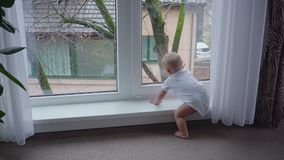 The boy at the window. The baby boy is looking in the big window stock video footage