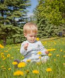 Baby boy looking at yellow flowers Royalty Free Stock Photography