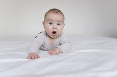 Baby boy lying on belly Royalty Free Stock Images