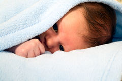 Baby boy is lying under blanket stock image
