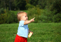 Baby boy on the meadow Stock Photography