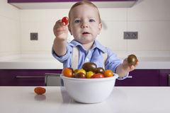 Baby boy offering ripe colorful cherry tomatoe. Education on healthy nutrition for children concept Stock Images