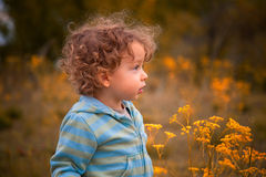 Baby boy outdoor in the countryside Stock Photography