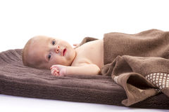 Baby boy over brown blanket Royalty Free Stock Photo