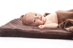 Baby boy over brown blanket Royalty Free Stock Image