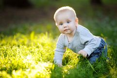 Baby boy at the park Royalty Free Stock Image