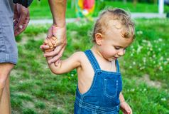 Baby Boy in park. trust family hands of child son and father. On field nature outdoor stock photography