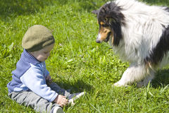 Baby boy and pet dog Stock Image
