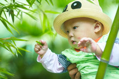 Baby boy play in bamboo forest Stock Photo