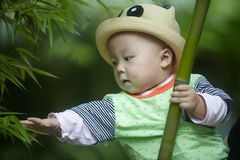 Baby boy play in bamboo forest Royalty Free Stock Photography