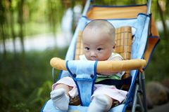 Baby boy play in bamboo forest Royalty Free Stock Photos
