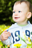Baby boy play with dandelions Royalty Free Stock Image
