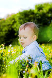 Baby boy play with dandelions Royalty Free Stock Photography