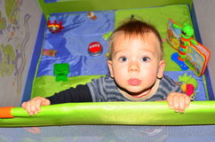 Baby boy in play pen Stock Image