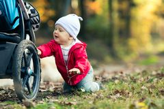 Baby boy playing in autumn forest with stroller, outdoors fun. Happy child on hiking trip in woods Royalty Free Stock Image