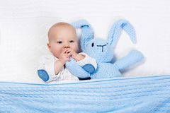 Baby boy playing with bunny toy in bed Stock Images