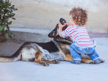 Baby boy playing with a dog Stock Photography