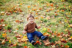 Baby boy playing with foliage in autumn park stock photo