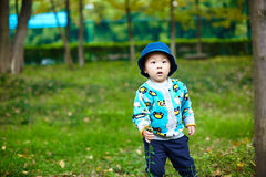 Baby boy playing on grass Stock Images