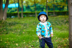 Baby boy playing on grass Stock Photos