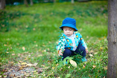 Baby boy playing on grass Royalty Free Stock Photos