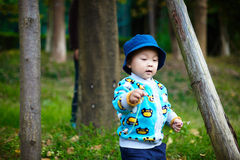 Baby boy playing on grass Royalty Free Stock Images