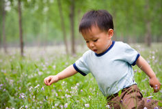 Baby boy playing on the grassland Stock Photo