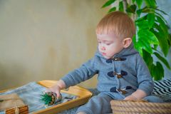 Baby boy playing with houseplant royalty free stock images
