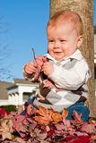 Baby Boy. Playing in the Leaves Stock Photography