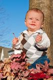 Baby Boy. Playing in the Leaves Royalty Free Stock Image
