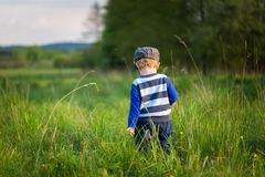 Baby boy playing on meadow Stock Photos