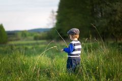 Baby boy playing on meadow Royalty Free Stock Photo