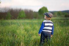Baby boy playing on meadow Stock Photo