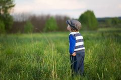 Baby boy playing on meadow Royalty Free Stock Photos