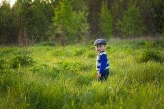 Baby boy playing on meadow Stock Photography