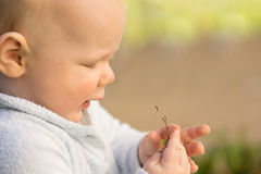 Baby boy playing outdoors in garden Royalty Free Stock Photography