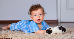 Baby boy playing with puppy Royalty Free Stock Image